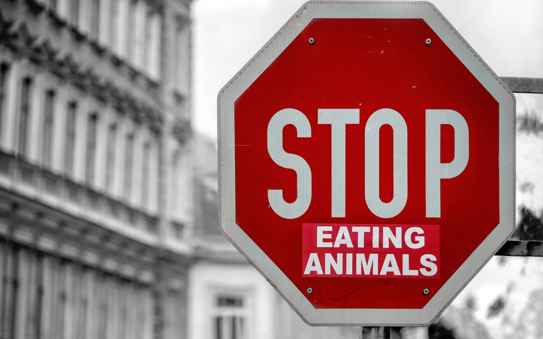 Five important reasons not to eat meat