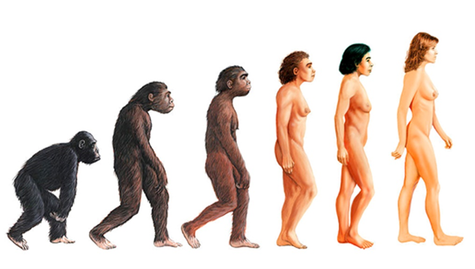 Reincarnation and our evolutionary journey